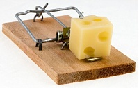 mouse-trap-cropped.jpg