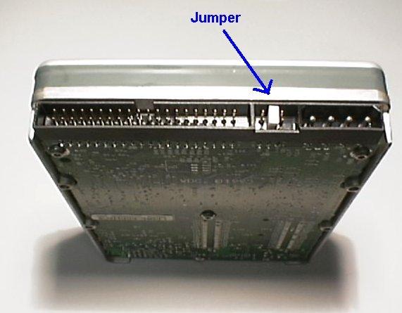��������: 0336.jumpers.jpg ����������: 1069  ������: 35.1 ��