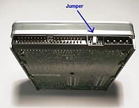 0336.jumpers.jpg