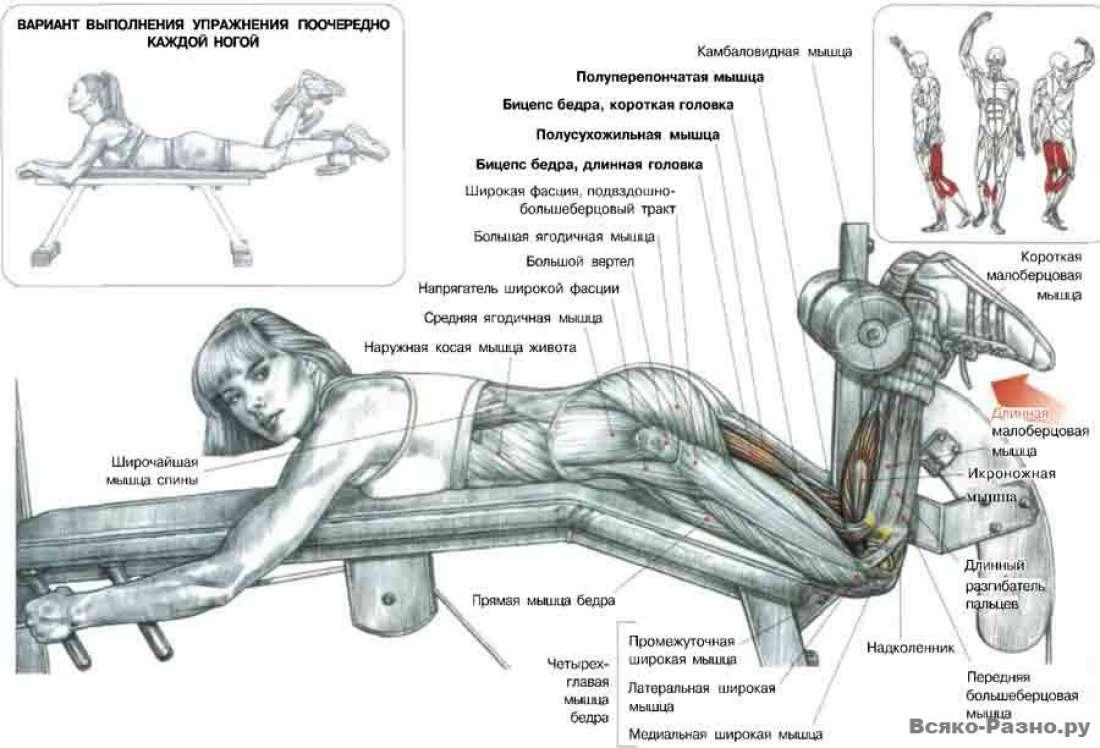 физические упражнения для потенции фото
