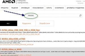 amd_search_result.jpg