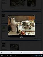 screenshot_2013-09-06-23-30-39.jpg