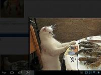 screenshot_2013-09-06-23-31-04.jpg