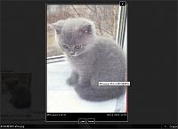 snap-2011-11-04-19-18-52.jpg